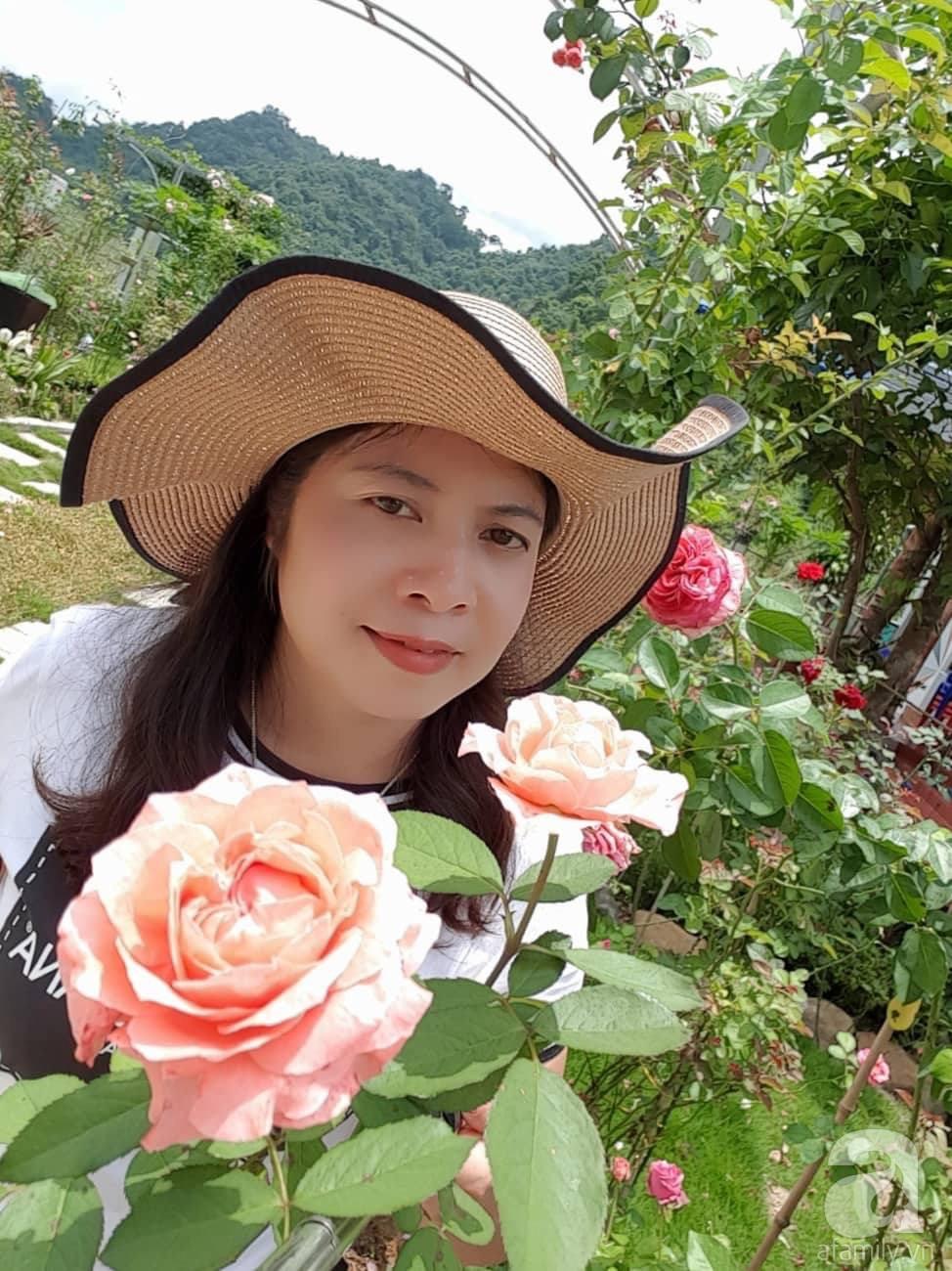 Ngôi nhà hoa hồng thơm ngát và rực rỡ với hàng trăm gốc hồng trên triền núi của cô giáo ở Cao Bằng - Ảnh 3.