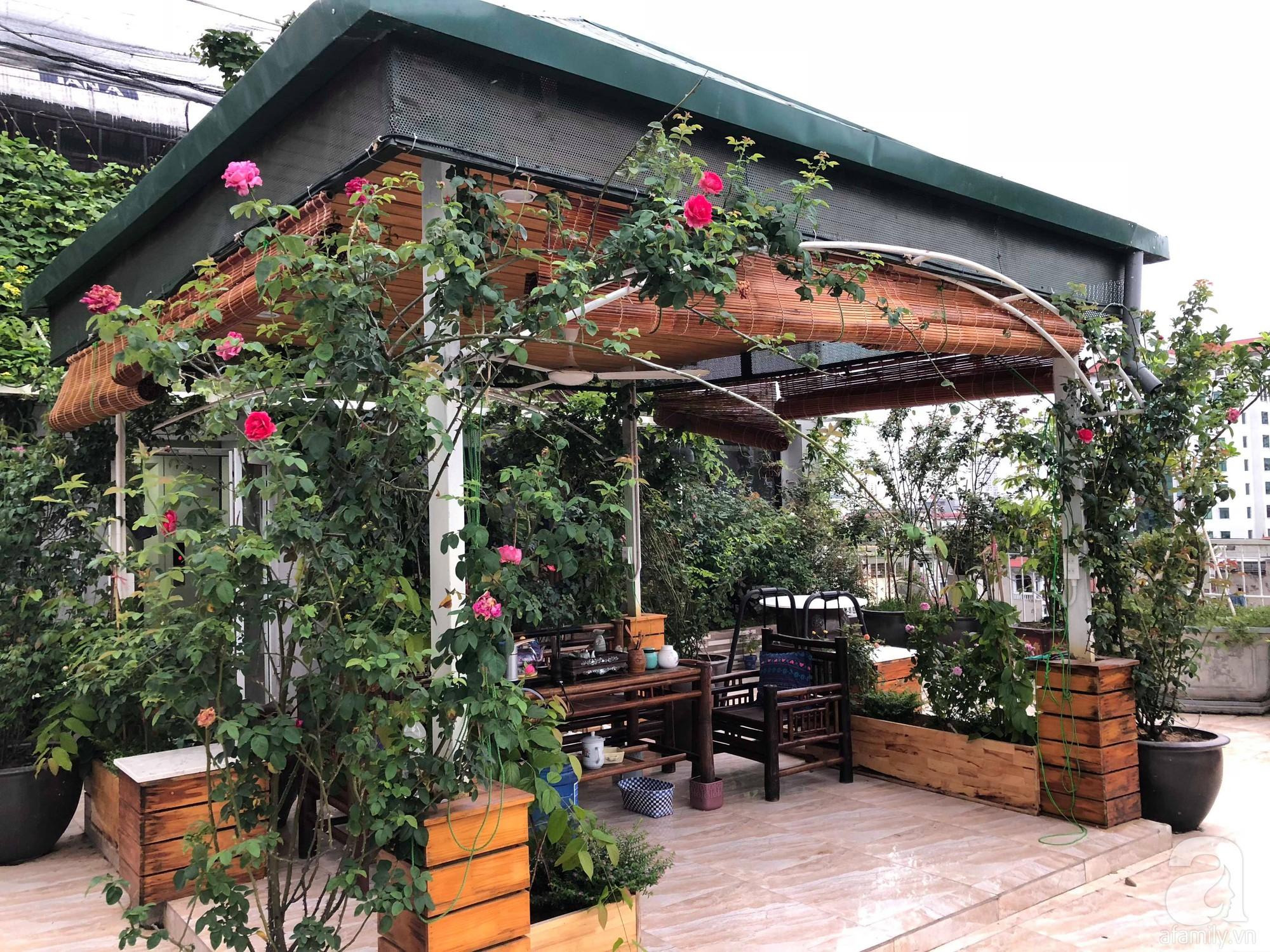Khu vườn trên sân thượng rộng 200m² đẹp ngỡ ngàng với trăm loài hoa đua nhau khoe sắc ở Hà Nội - Ảnh 4.