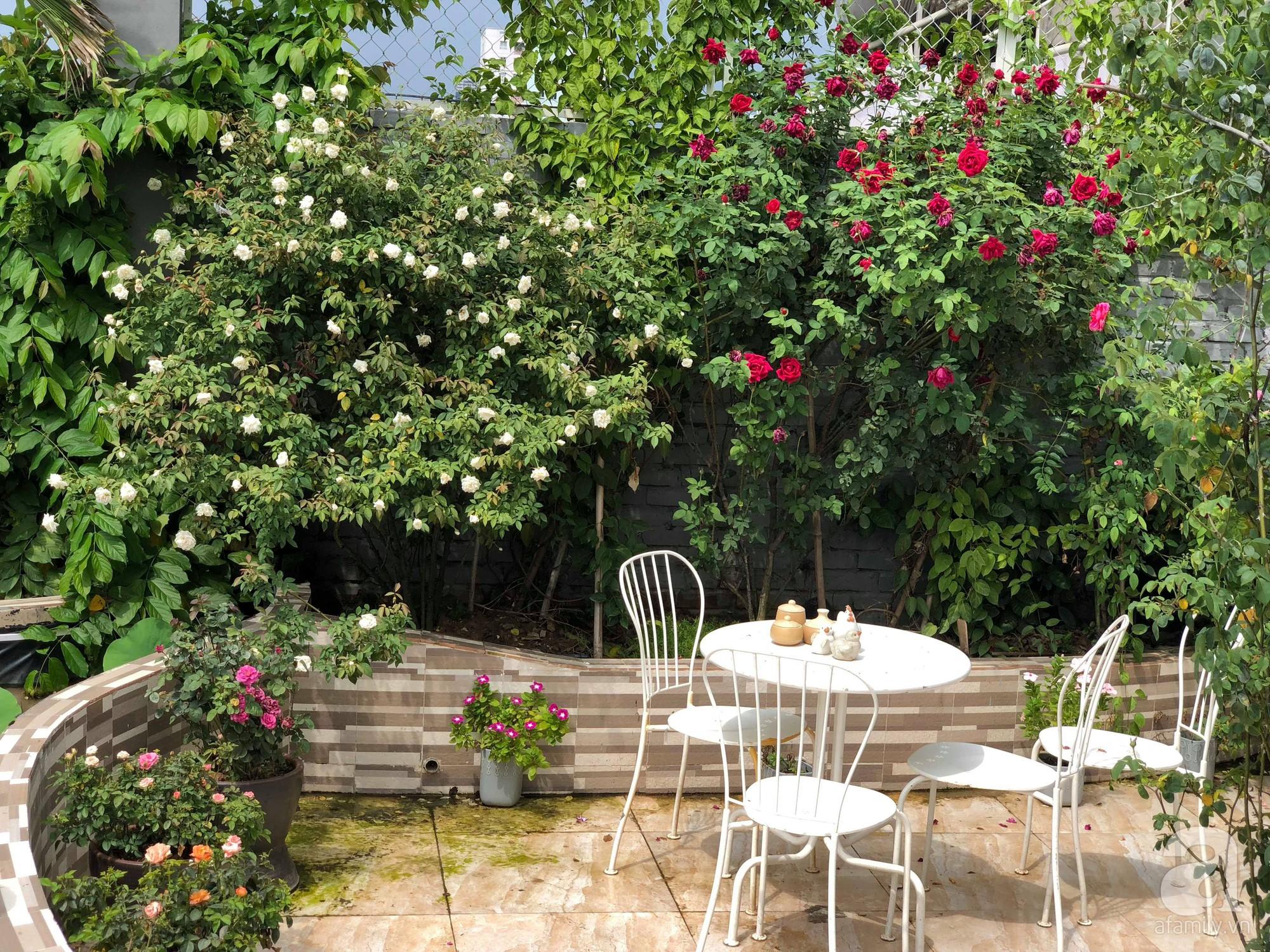 Khu vườn trên sân thượng rộng 200m² đẹp ngỡ ngàng với trăm loài hoa đua nhau khoe sắc ở Hà Nội - Ảnh 1.