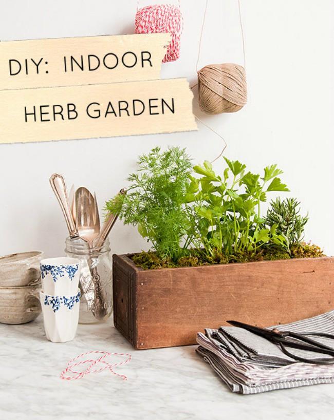 15 ý tưởng cho thấy chỗ nào trong nhà bạn cũng có thể trồng cây gia vị siêu xinh  - Ảnh 14.