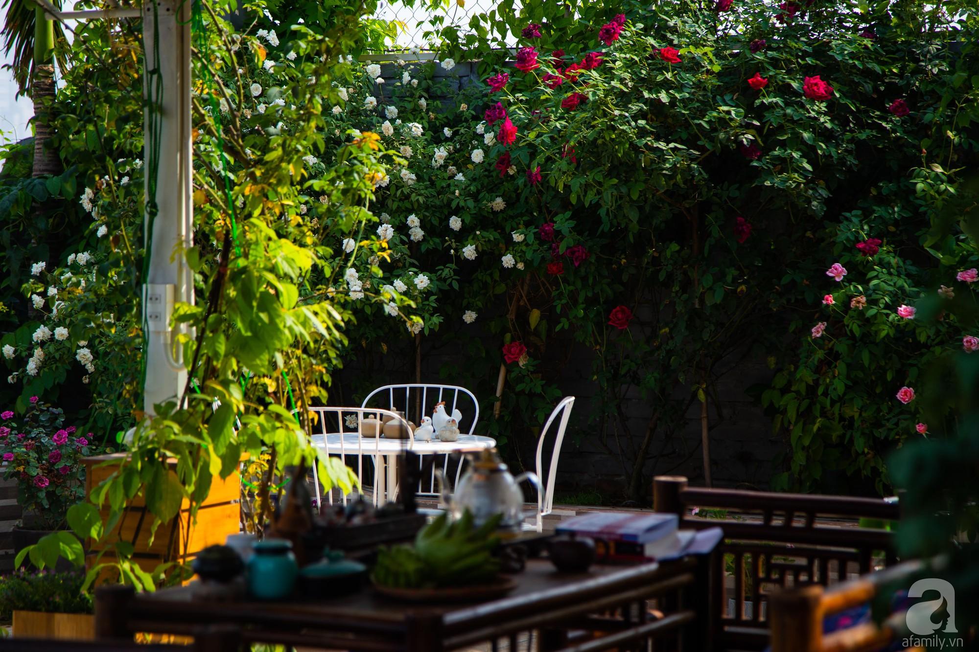 Khu vườn trên sân thượng rộng 200m² đẹp ngỡ ngàng với trăm loài hoa đua nhau khoe sắc ở Hà Nội - Ảnh 11.