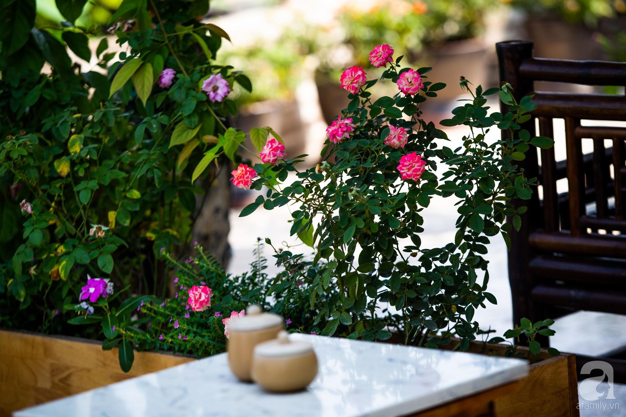 Khu vườn trên sân thượng rộng 200m² đẹp ngỡ ngàng với trăm loài hoa đua nhau khoe sắc ở Hà Nội - Ảnh 10.