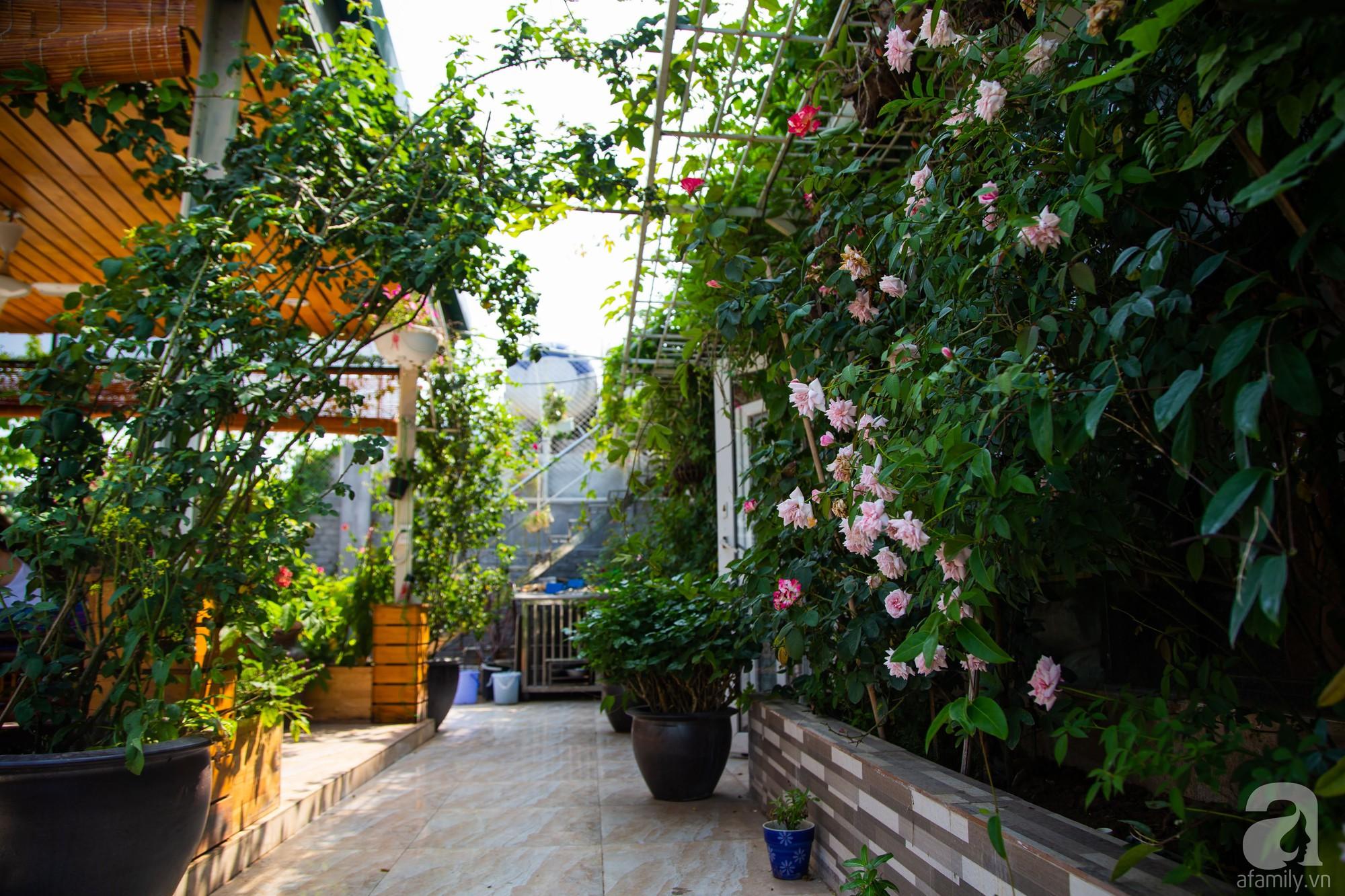 Khu vườn trên sân thượng rộng 200m² đẹp ngỡ ngàng với trăm loài hoa đua nhau khoe sắc ở Hà Nội - Ảnh 8.