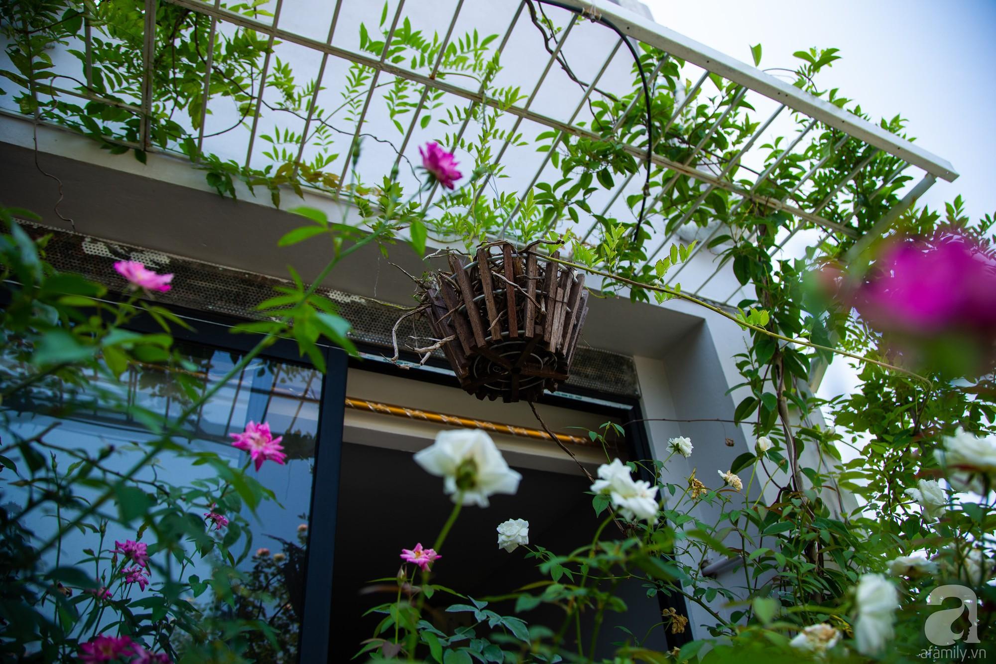 Khu vườn trên sân thượng rộng 200m² đẹp ngỡ ngàng với trăm loài hoa đua nhau khoe sắc ở Hà Nội - Ảnh 7.