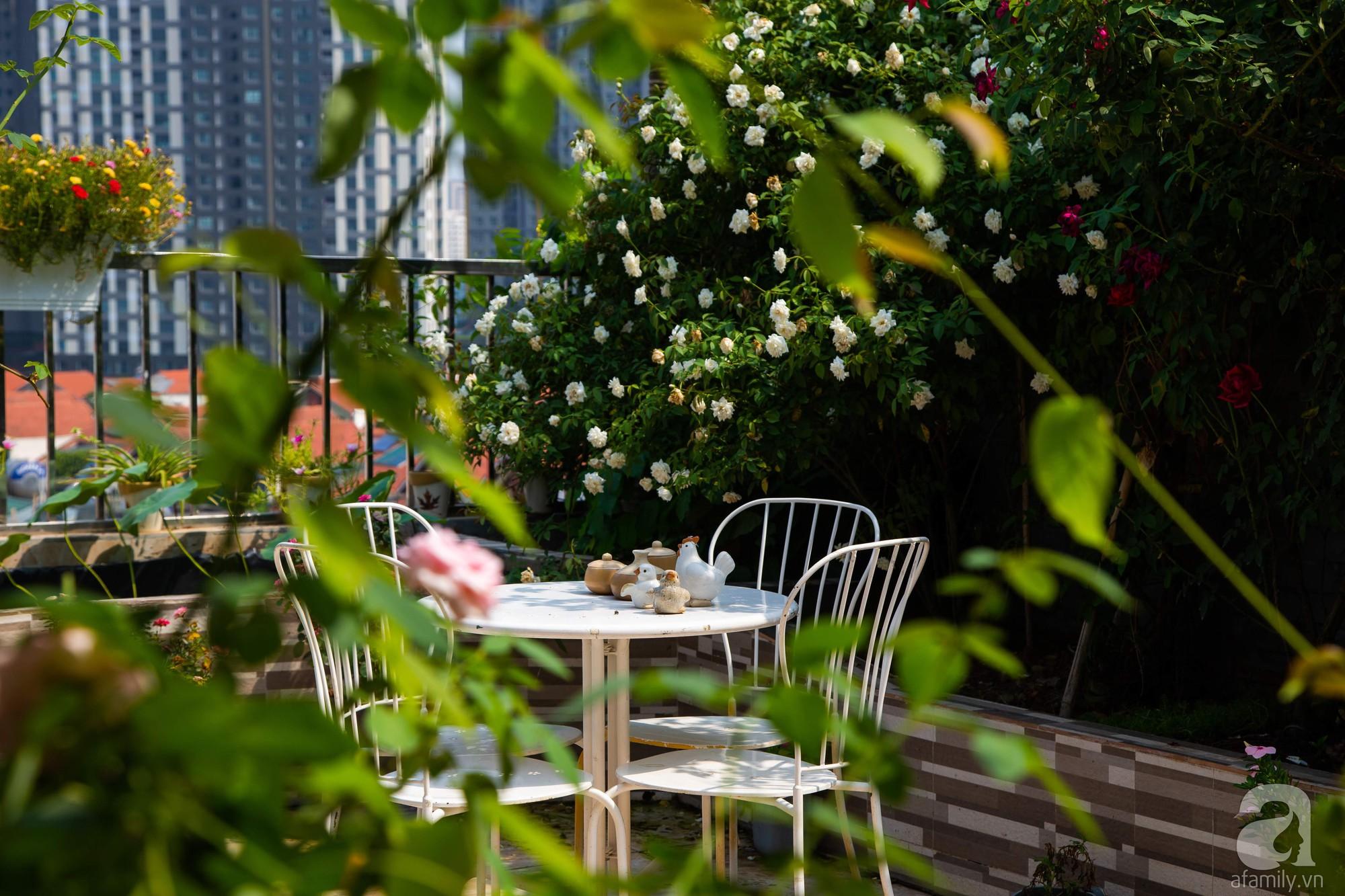 Khu vườn trên sân thượng rộng 200m² đẹp ngỡ ngàng với trăm loài hoa đua nhau khoe sắc ở Hà Nội - Ảnh 5.