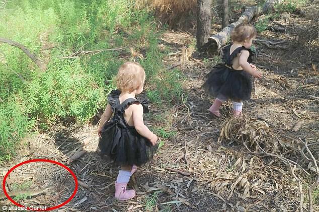 Xem lại ảnh chụp, bà mẹ rùng mình phát hiện 2 con gái nhỏ đã thoát chết thần kỳ trong gang tấc - Ảnh 2.