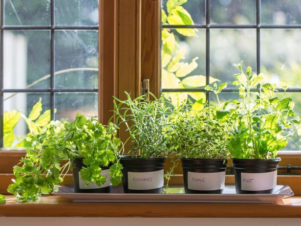15 ý tưởng cho thấy chỗ nào trong nhà bạn cũng có thể trồng cây gia vị siêu xinh  - Ảnh 5.