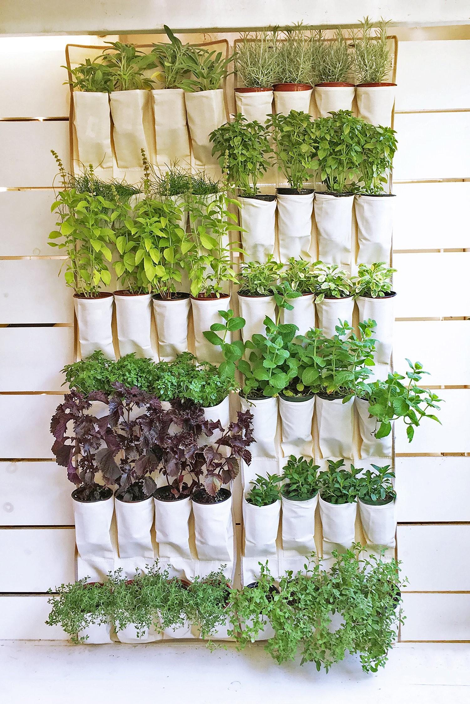15 ý tưởng cho thấy chỗ nào trong nhà bạn cũng có thể trồng cây gia vị siêu xinh  - Ảnh 8.