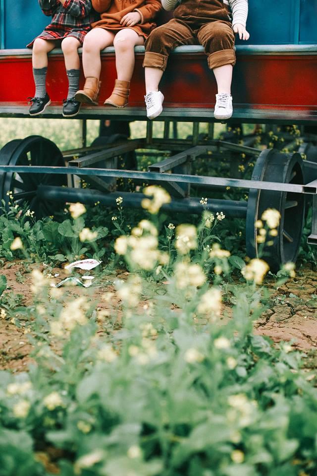 Bộ ba bạn thân Mầm - Mũm - Mon xuất hiện siêu yêu trong bộ ảnh chụp trên cánh đồng hoa cải - Ảnh 16.
