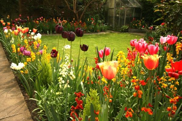 Rộn ràng hương sắc xuân trong sân vườn nhờ những ý tưởng làm đẹp sáng tạo - Ảnh 2.