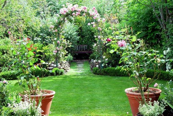 Rộn ràng hương sắc xuân trong sân vườn nhờ những ý tưởng làm đẹp sáng tạo - Ảnh 9.