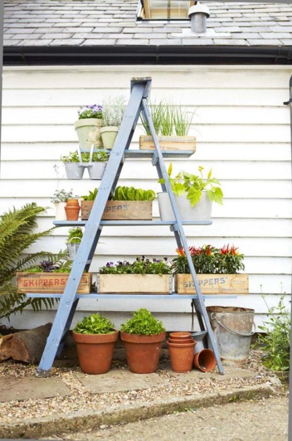 Mẹo nhỏ tận dụng kệ tầng đã cũ tạo vẻ đẹp cho không gian sân vườn - Ảnh 1.