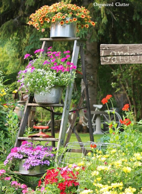 Mẹo nhỏ tận dụng kệ tầng đã cũ tạo vẻ đẹp cho không gian sân vườn - Ảnh 6.