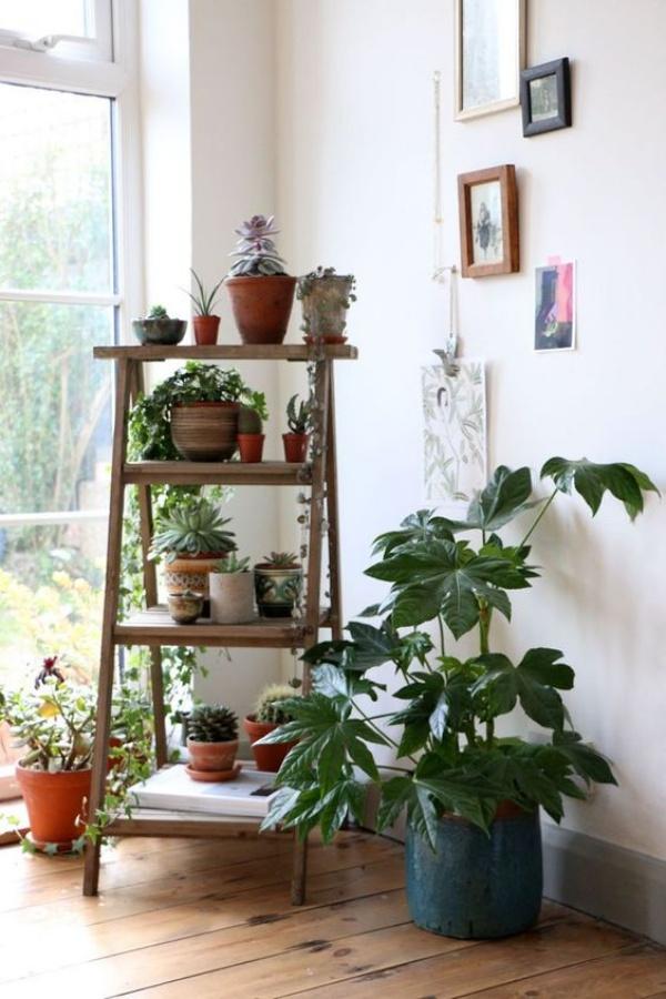 Mẹo nhỏ tận dụng kệ tầng đã cũ tạo vẻ đẹp cho không gian sân vườn - Ảnh 13.