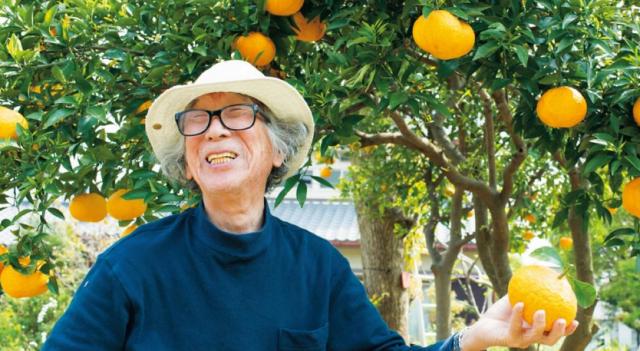 Cặp vợ chồng già bỏ phố về quê tận hưởng cuộc sống an nhàn bên ngôi nhà vườn rợp bóng cây xanh - Ảnh 4.