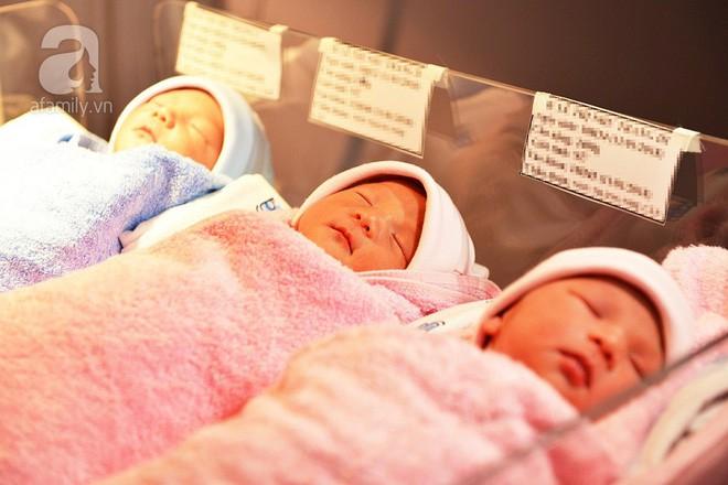 TP.HCM: Mang tam thai sản phụ vẫn sinh thường các bé hoàn toàn khỏe mạnh, đáng yêu - Ảnh 2.