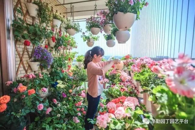 Ban công chỉ rộng vỏn vẹn 7m² nhưng tràn ngập hoa đẹp như cổ tích của bà mẹ bỉm sữa 2 con - Ảnh 11.