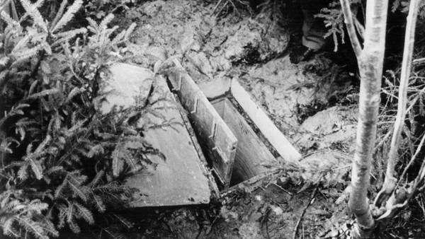 Cô bé 10 tuổi bị chôn sống trong thùng gỗ, gần 3 thập kỉ sau kẻ thủ ác lộ nguyên hình là kẻ không aingờ - Ảnh 2.
