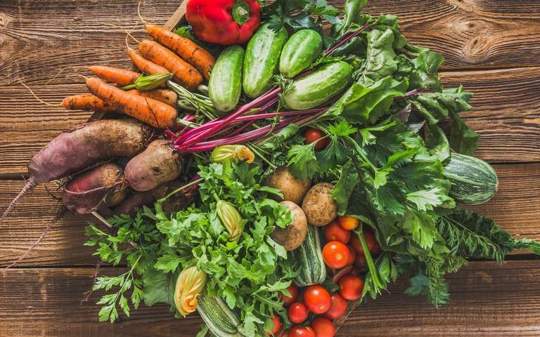 Gia đình sẽ không tốn tiền mua rau củ bên ngoài nhờ biết trồng các loại rau này trong vườn