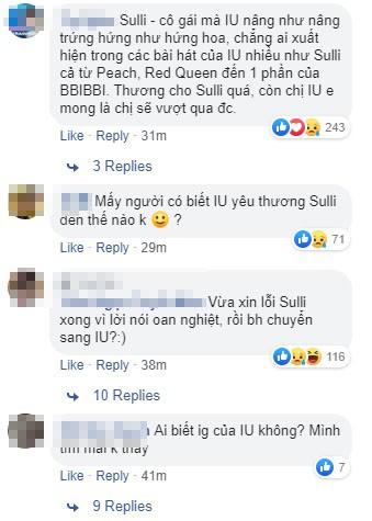 """Sulli tự vẫn, Knet chửi mắng """"em gái quốc dân"""" IU, cư dân mạng Việt Nam lên tiếng: Giết một người vẫn chưa đủ sao - Ảnh 3."""