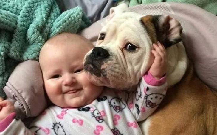 """""""Tan chảy"""" với hình ảnh tình bạn ấm áp giữa trẻ và thú cưng"""