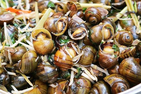 Ăn loại ốc này vào mùa thu không chỉ ngon mà còn chữa được vô số bệnh hay ho thế này! - Ảnh 1.