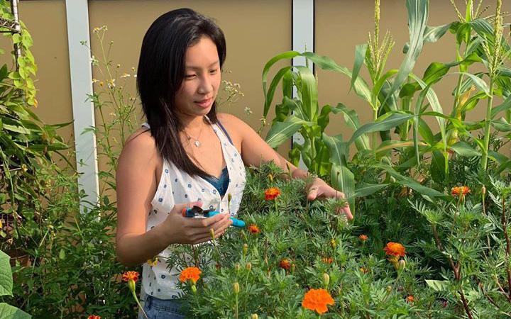 Cô gái trẻ quyết tâm biến sân thượng 20m² thành khu vườn hữu cơ trồng không thiếu thứ gì