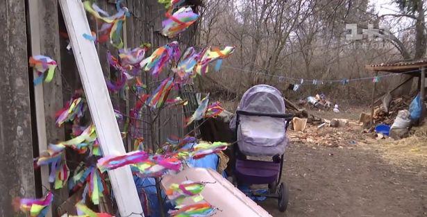 Bé gái 9 tháng tuổi bị ngạt thở trong khi ngủ trên xe đẩy bởi một con mèo - Ảnh 1.