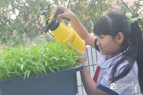 Vườn rau xanh ngát đủ loại cây trong các trường, cha mẹ nhìn vào cũng phải mê tít - Ảnh 8.