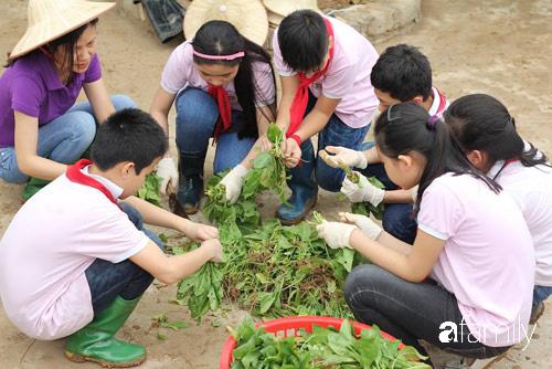 Vườn rau xanh ngát đủ loại cây trong các trường, cha mẹ nhìn vào cũng phải mê tít - Ảnh 14.
