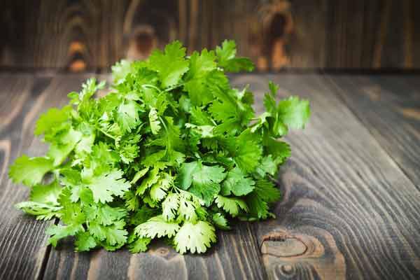 Rau mùi rất tốt nhưng kết hợp với những thực phẩm này có thể nuôi tế bào ung thư - Ảnh 3.