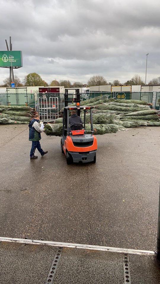 Giá chỉ từ 350.000 đồng, những cây thông Noel tươi đang hấp dẫn người tiêu dùng trong dịp Giáng sinh sắp đến - Ảnh 7.
