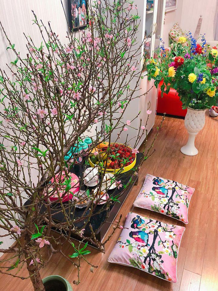 Những loại cây hợp phong thủy để bày trong nhà ngày Tết - Ảnh 1.