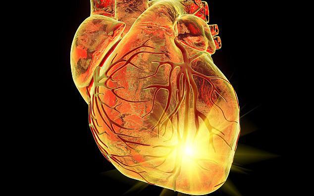 Có nên sợ hãi khi sống trong gia đình có tiền sử bệnh tim mạch?