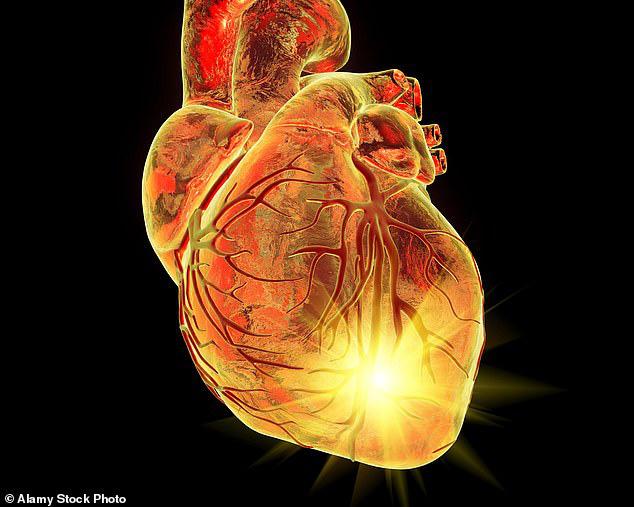 Có nên sợ hãi khi sống trong gia đình có tiền sử bệnh tim mạch? - Ảnh 1.