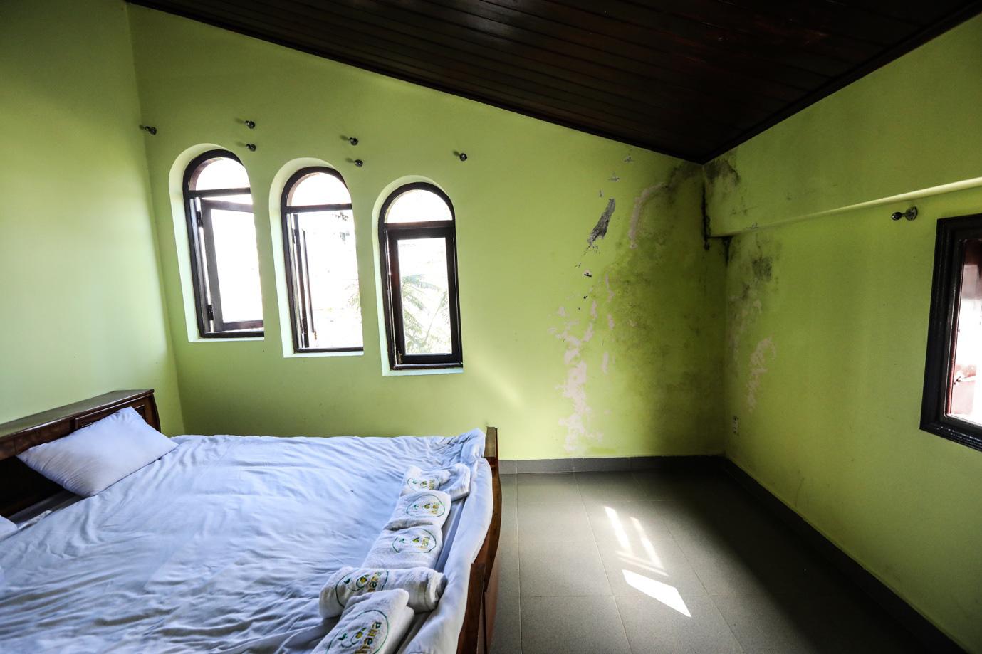 Kế hoạch giải cứu ngôi nhà bị nồm ẩm lâu năm tại Đà Lạt - Ảnh 1.