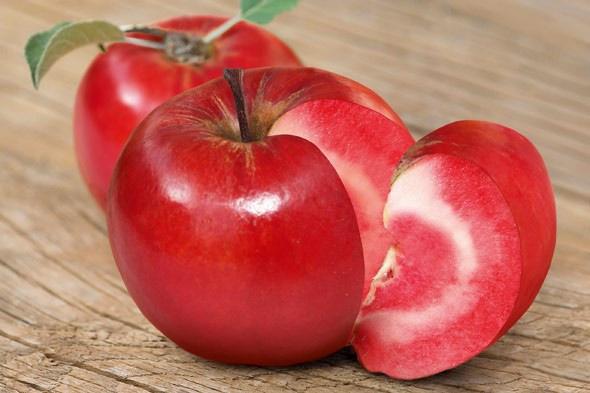 Chị em phấn khích với giống táo vỏ đỏ, ruột cũng đỏ mà lại không phải là quả biến đổi gen - Ảnh 4.