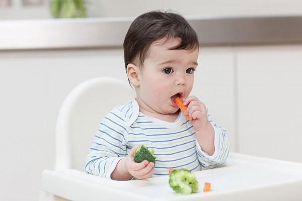Những thực phẩm vô cùng tuyệt vời mà cha mẹ rất nên bổ sung cho con ăn dặm mỗi ngày - Ảnh 1.