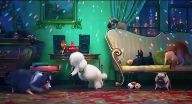 Trailer mới của Đẳng cấp thú cưng 2 siêu hài: Mèo bị rối loạn ứng xử, chuột bị ám ảnh giảm cân - Ảnh 1.
