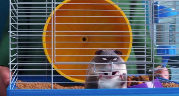 Trailer mới của Đẳng cấp thú cưng 2 siêu hài: Mèo bị rối loạn ứng xử, chuột bị ám ảnh giảm cân - Ảnh 5.
