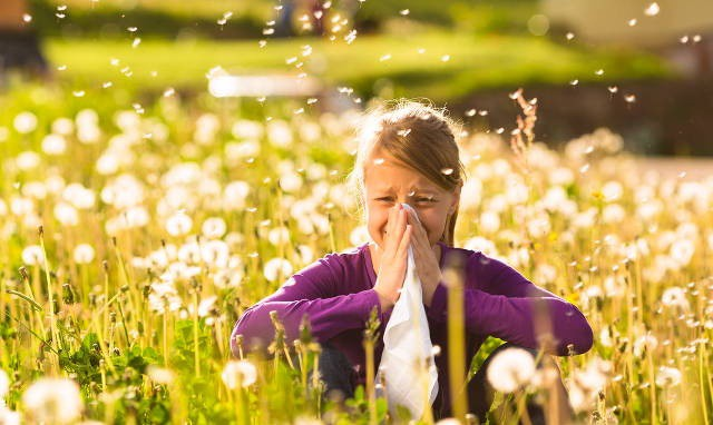 Đau đầu do dị ứng: Những điều chuyên gia muốn ai cũng biết để loại bỏ bệnh càng sớm càng tốt - Ảnh 3.
