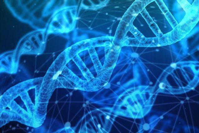 Thực hư về chế độ dinh dưỡng giảm cân dựa trên ADN của con người - Ảnh 3.