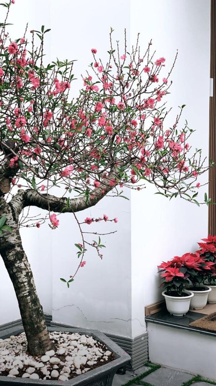Biệt thự ven hồ xa hoa của nàng Á hậu Việt lấy chồng thiếu gia kém tuổi - Ảnh 4.