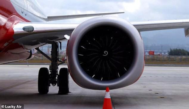 Kiểm tra camera an ninh trên máy bay, cảnh sát lập tức bắt giữ hành khách có hành động mê tín gây nguy hiểm tính mạng của hàng trăm người - Ảnh 7.