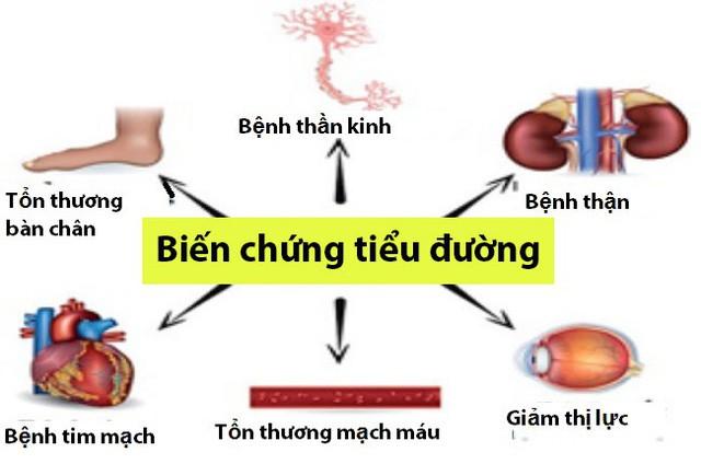 Khả năng hạ đường huyết vượt trội của cây thìa canh lá to - Ảnh 1.