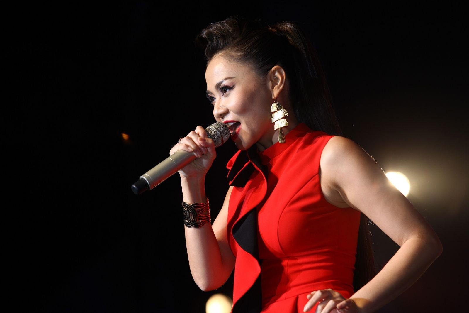 Thu Minh gây tranh cãi ồn ào với danh xưng Diva, đây là cách Mỹ Linh nói về tên gọi này  - Ảnh 2.