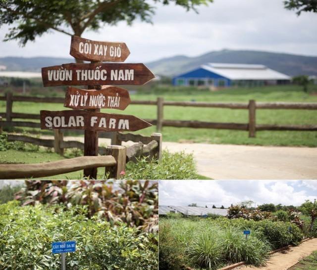 Cần 1 nơi để gia đình khám phá thiên nhiên: Hãy thử 1 ngày trải nghiệm ở trang trại bò sữa Vinamilk Organic Đà Lạt - Ảnh 6.