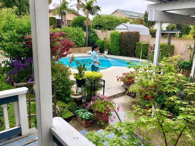 Một trong những ảnh hiếm hoi được tiết lộ về không gian sống của nghệ sĩ Hồng Đào với vườn cây xanh quanh hồ bơi ngoài trời.