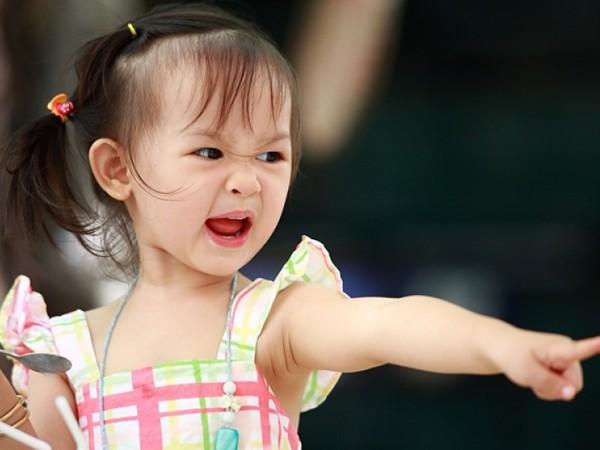 Vì sao trẻ lên 2 lại vô cùng nổi loạn, khó bảo? Lắng nghe chuyên gia chỉ ngay cách để cha mẹ đối mặt với giai đoạn này của trẻ - Ảnh 2.