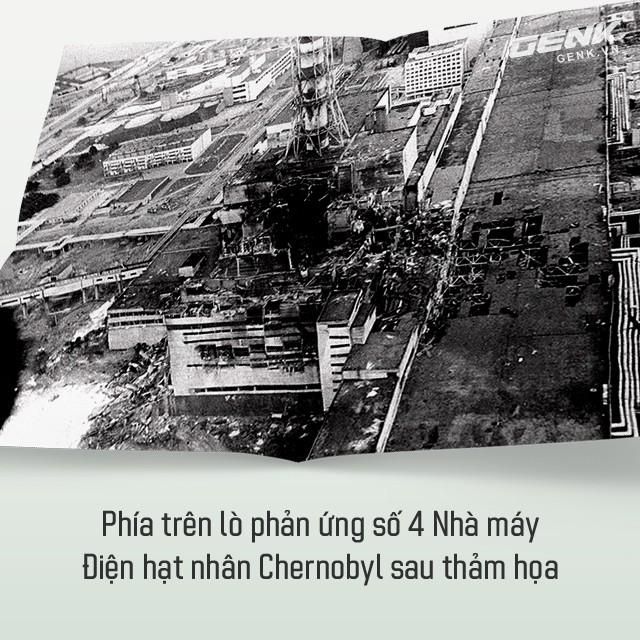 Từ địa ngục, Chernobyl nay trở thành thiên đường cho các loài động vật, có phải con người mới đáng sợ hơn cả hạt nhân? - Ảnh 1.